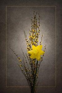 Frühjahrsblüher - Ginster und Osterglöckchen   Vintage-Stil gold