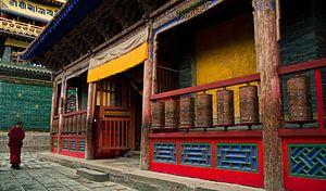 The Lonely Monk van Yona Photo