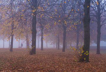 Wandelaar in een mistig bos van Anneriek de Jong
