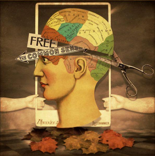 Free The Common Sense van Marja van den Hurk