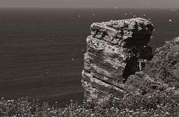 Vergezicht kliffen Helgoland van Photo- ER
