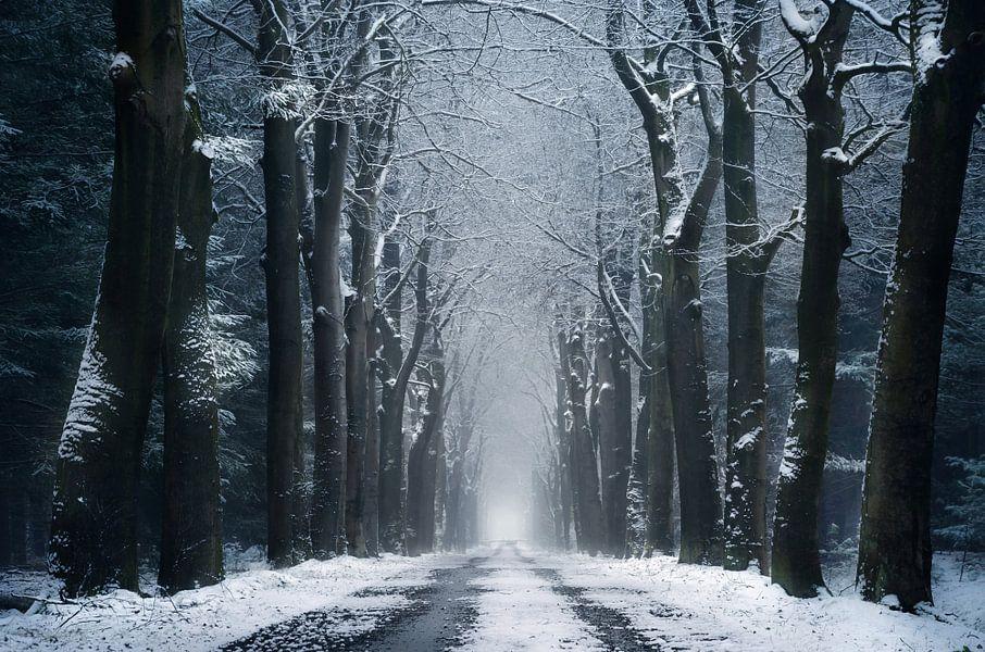 The infinite road van Rob Visser