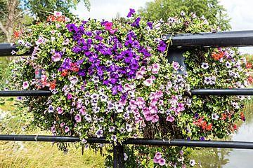 Bunte Blumen auf einem Brückengeländer von Art by Jeronimo