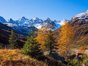 Kleurige herfst in de bergen van Karin vd Waal