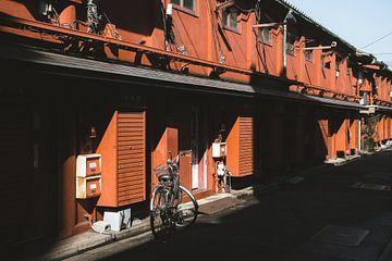 Japanse straat in de schaduw in Tokyo met een fiets en rode huizen op de achtergrond van Michiel Dros