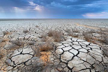 Trockenheit im Wattenmeer - Natürliches Wattenmeer von Anja Brouwer Fotografie