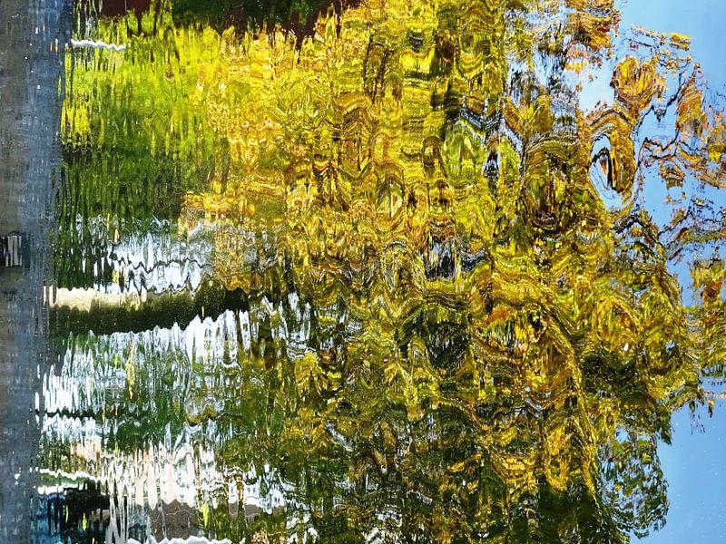 Tree Magic 158 van MoArt (Maurice Heuts)