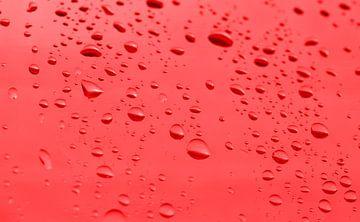 Goutte d'eau sur BVpix
