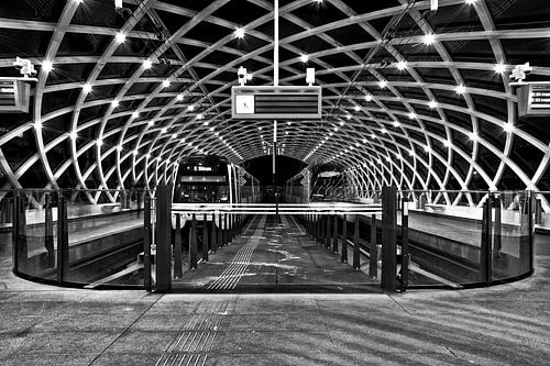 Den Haag bij Nacht in Zwart Wit van