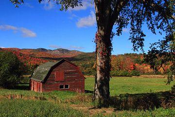 Old barn sur lieve maréchal