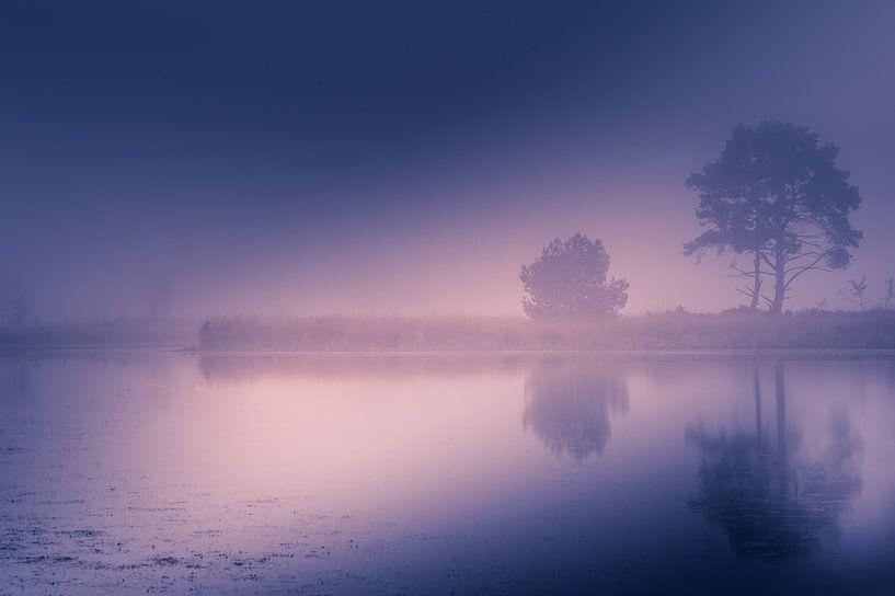 Nebel am Morgen von Bjorn Dockx