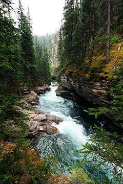 De wilde rivier door de bergen van Nathan Marcusse