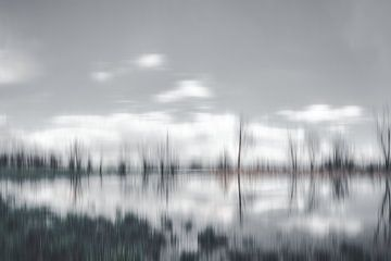 grijs landschap van URS.INHO