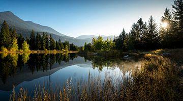 Meertje op Wilson Ranch sur Fotografie door Menno