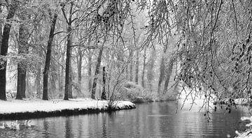 Meertje met gevogelde in de sneeuw von Michel Van Zanten