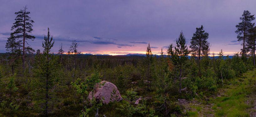 Panorama Idre während der blauen Stunde von Arjen Roos