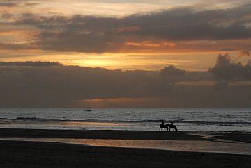 Paarden op het strand tijdens zonsondergang van Margreet Frowijn