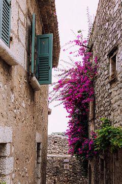 Blick durch französisches Dorf - Blumen und Fensterläden | Reisefotografie in Südfrankreich, Europa von Sun Dances