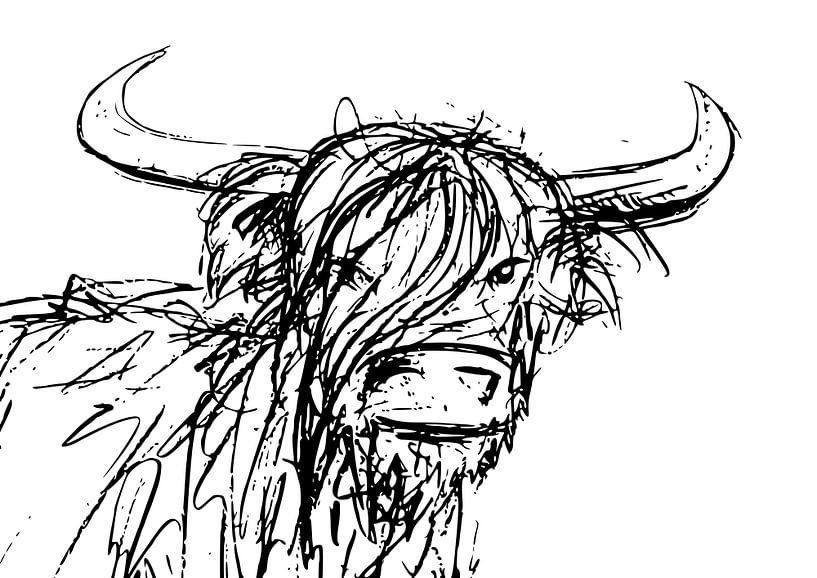 Tuschestift-Illustration eines Stiers mit großen Hörnern von Emiel de Lange