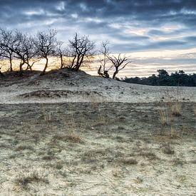 Duinlandschap bij zonsopkomst van Mark Bolijn
