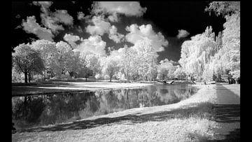 Een wandeling in het park met mijn infrarood camera van