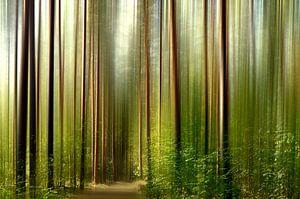 Im Wald van