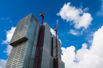 De 'Rotterdam' groeit von Aiji Kley