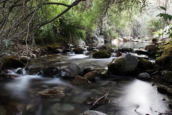 The Bosque River