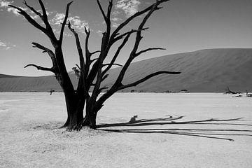 Namibië van