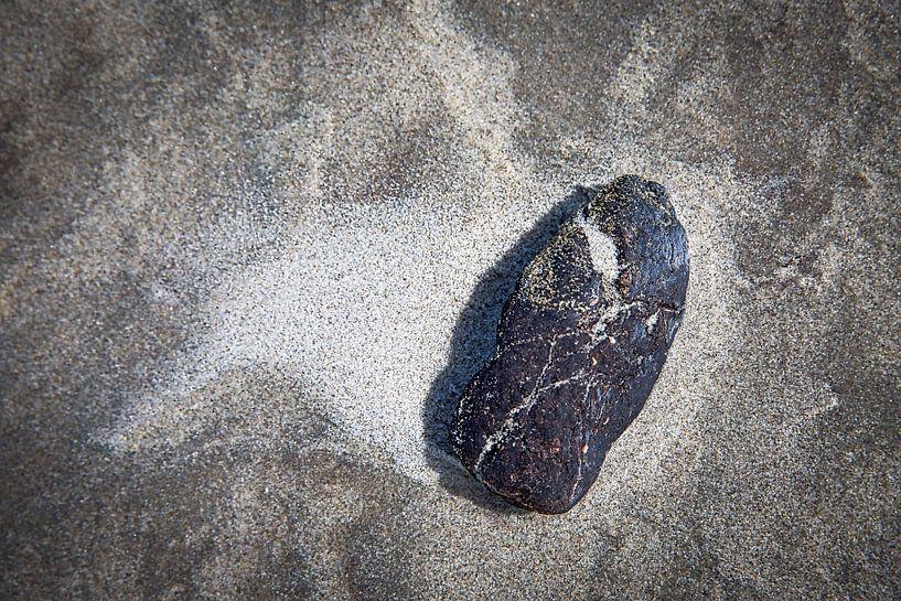 aangespoeld aan het strand van Ed Dorrestein