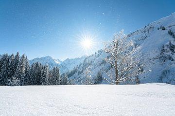 Winter in Kleinwalsertal van Leo Schindzielorz