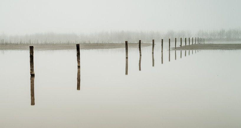 Maas uiterwaarden in de mist van Erik Wouters