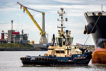 Sleepboten in de haven. IJmuiden van scheepskijkerhavenfotografie