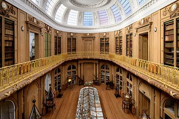 Teylers Museum - Ovale zaal 2 van Teylers Museum