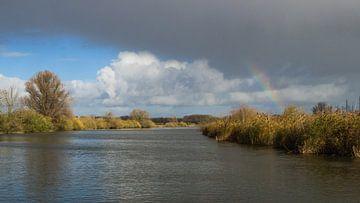 Regenboog in de Biesbosch van Esther van Nes