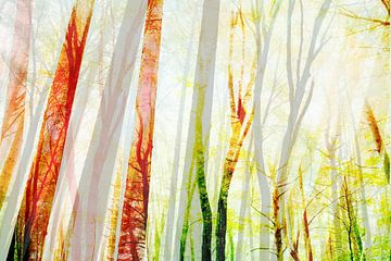 Sommer Wald von Jacob von Sternberg
