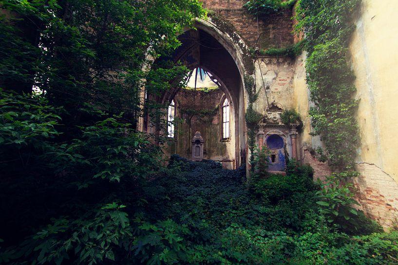 Nature takes over van Michelle Casteren
