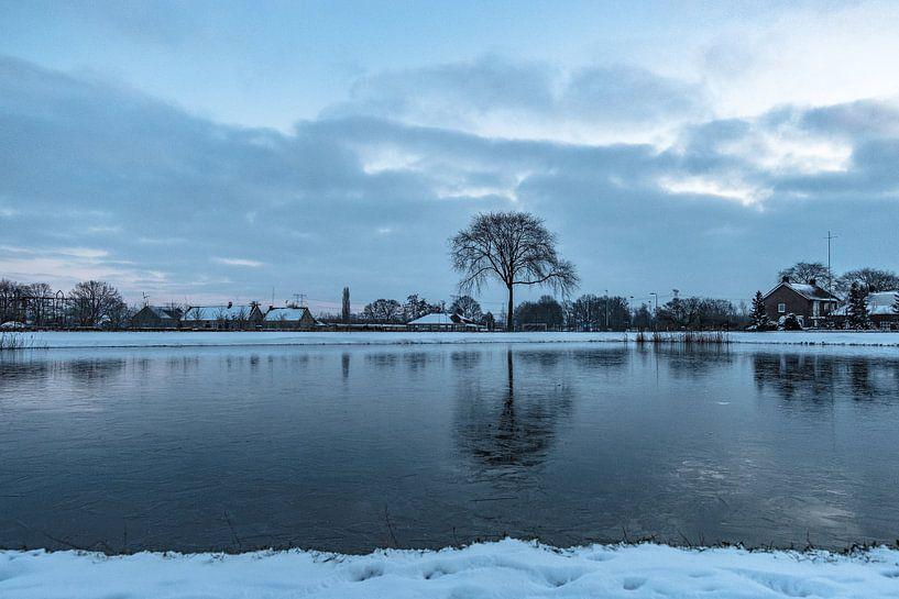Winter gezien vanuit Natuurgebied Moerenburg van Freddie de Roeck