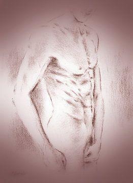 Verleidelijke mannen naakt - erotische tekeningen van