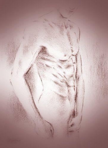 Verleidelijke mannen naakt - erotische tekeningen