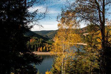 Herfst in de Ohratalsperre van Alexander Wolff