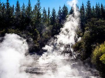 Stomend modderbad in Wai-O-Tapu Thermal Wonderland nabij Rotorua Niew-Zeeland van Rik Pijnenburg