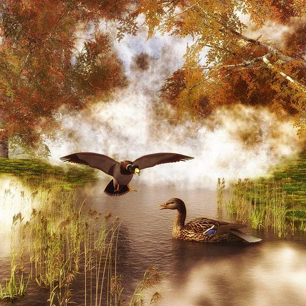 Dierenrijk – Twee eenden in een vijver van Jan Keteleer
