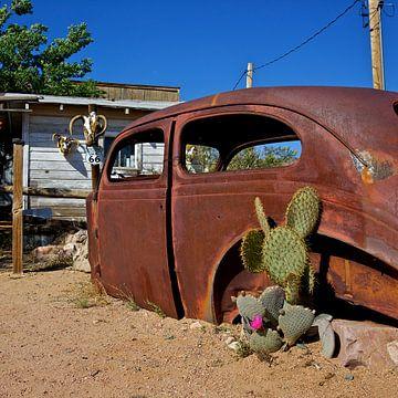 The cactus car van Gerard Oonk