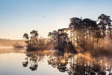 Landschap met zonneharpen en reflectie