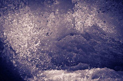 Wild water III van