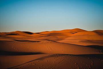 Schritte in der Wüste Sahara, Marokko von Bram Mertens