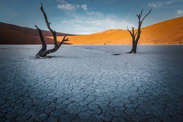 Geplaveide woestijn