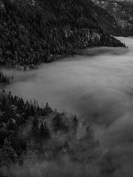 In de mist bij Königssee van Thomas Weber