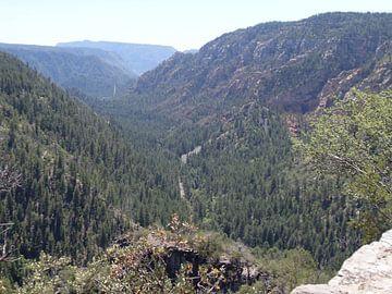 Yosemite National Park von Jeffrey de Ruig